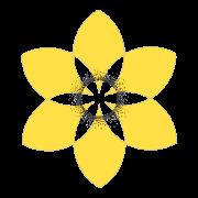 Daffodil Daily